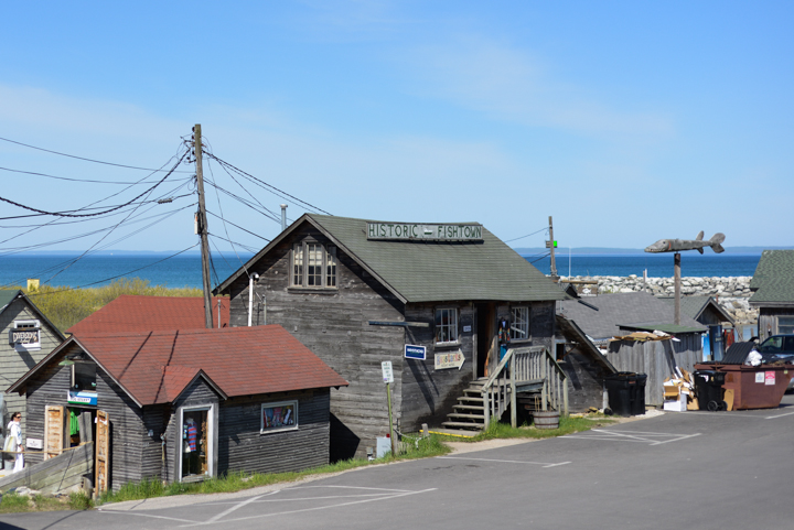 Some of the historic shops at Fish Town.